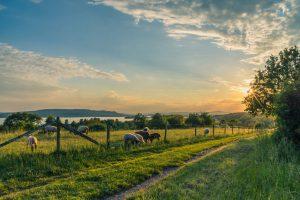 Abstellplatz für Wohnwagen am Bodensee finden